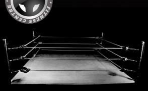 Boxing / Боксов ринг & круша